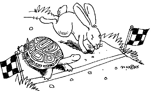Are You a Tortoise or a Hare Leader? Who Wins in the End.