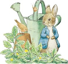 Free peter rabbit clipart.