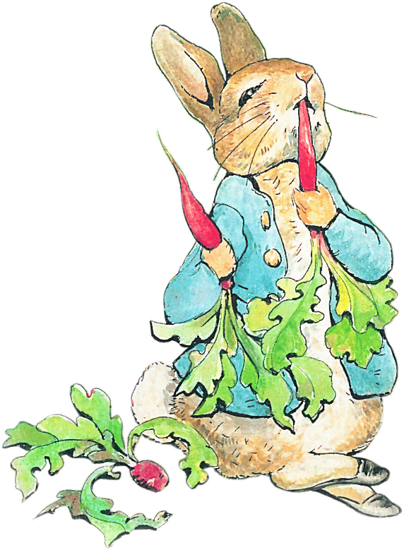 Peter rabbit clip art free.