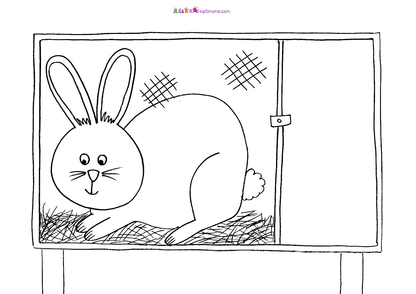 Showing post & media for Cartoon rabbit cage.