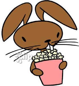 Bunny Rabbit Eating Popcorn.