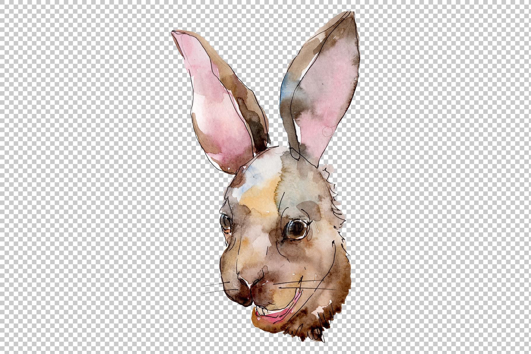 Farm animals rabbit head Watercolor png.
