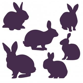 Rabbit Vectors, Photos and PSD files.