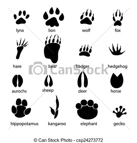 Vectors Illustration of set of different animal tracks.