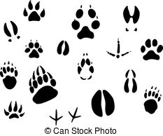Rabbit tracks Vector Clip Art Royalty Free. 125 Rabbit tracks.