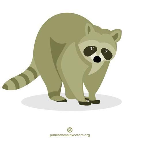 Raccoon vector clip art.