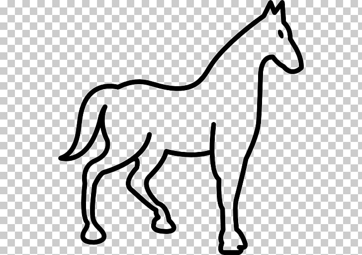 Thoroughbred Horse racing Equestrian Mare, race horse PNG.