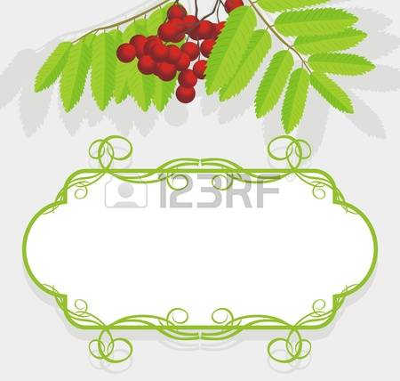 186 Raceme Stock Vector Illustration And Royalty Free Raceme Clipart.