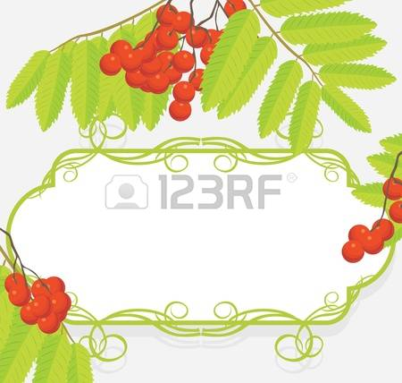 177 Raceme Stock Vector Illustration And Royalty Free Raceme Clipart.