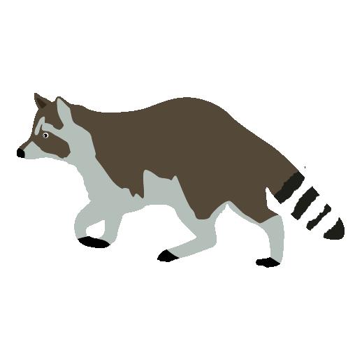 Free raccoon clipart 5.