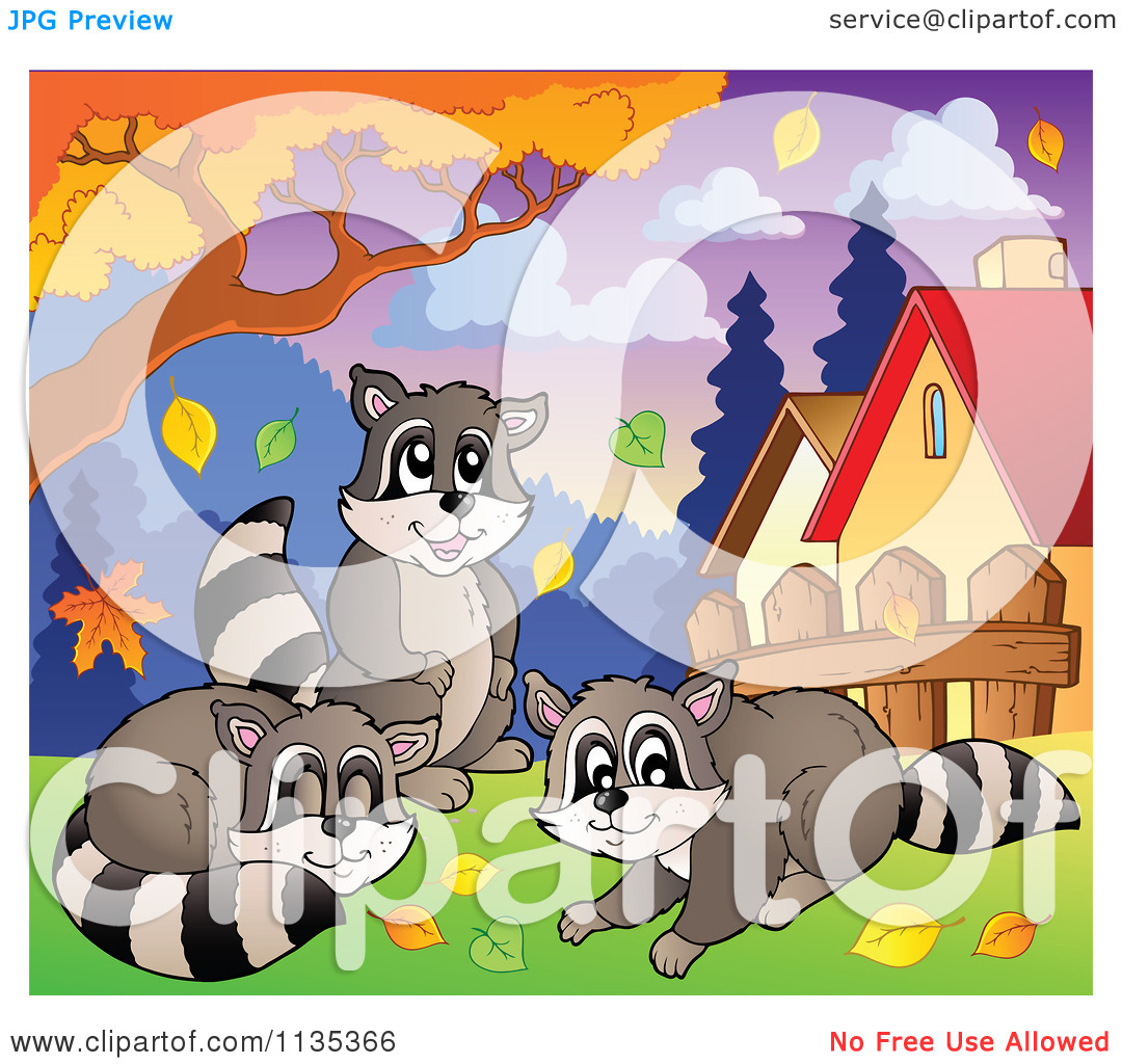 Raccoons On A Tree Clipart.
