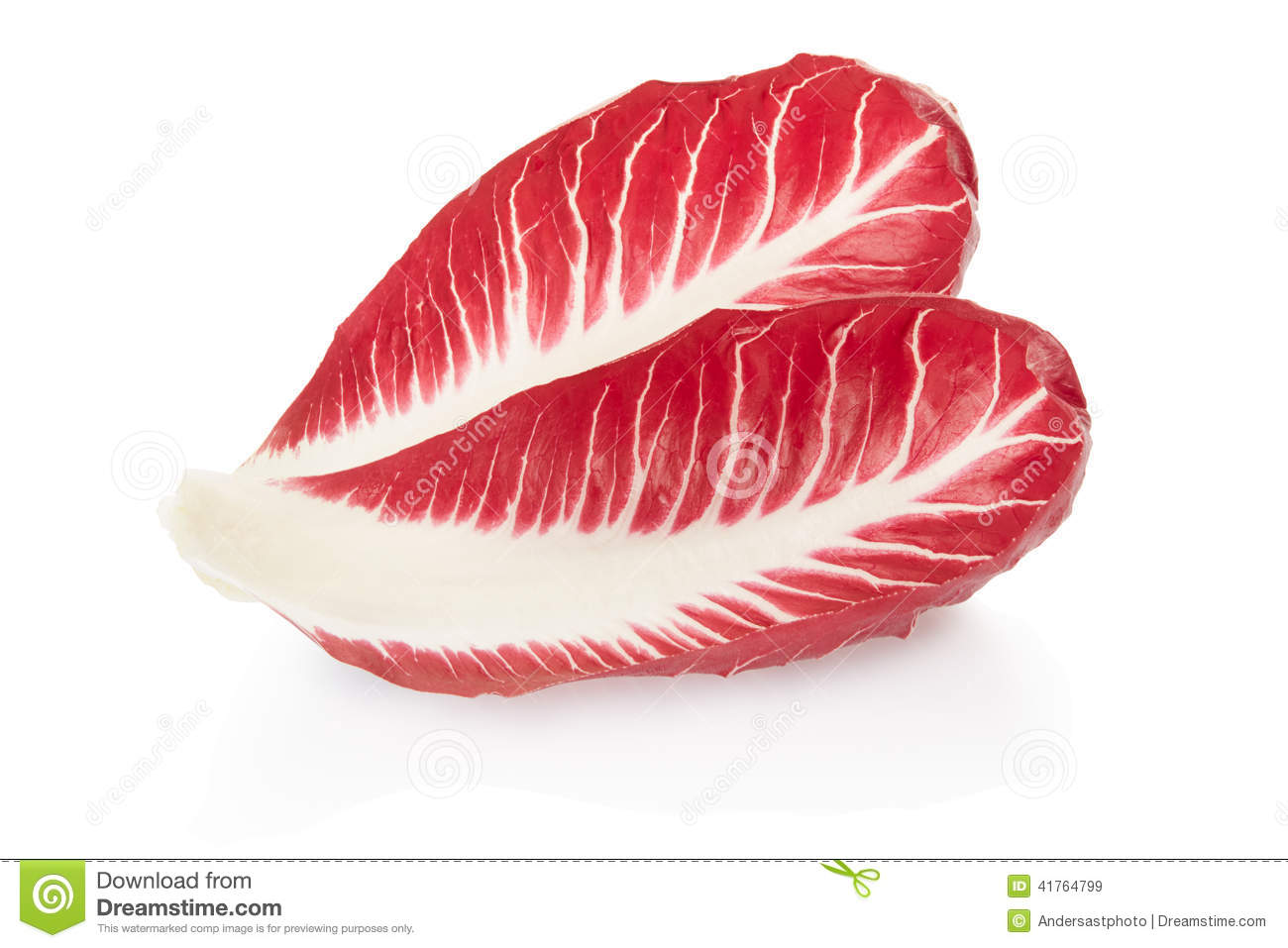 Radicchio Leaves, Red Salad Stock Photo.