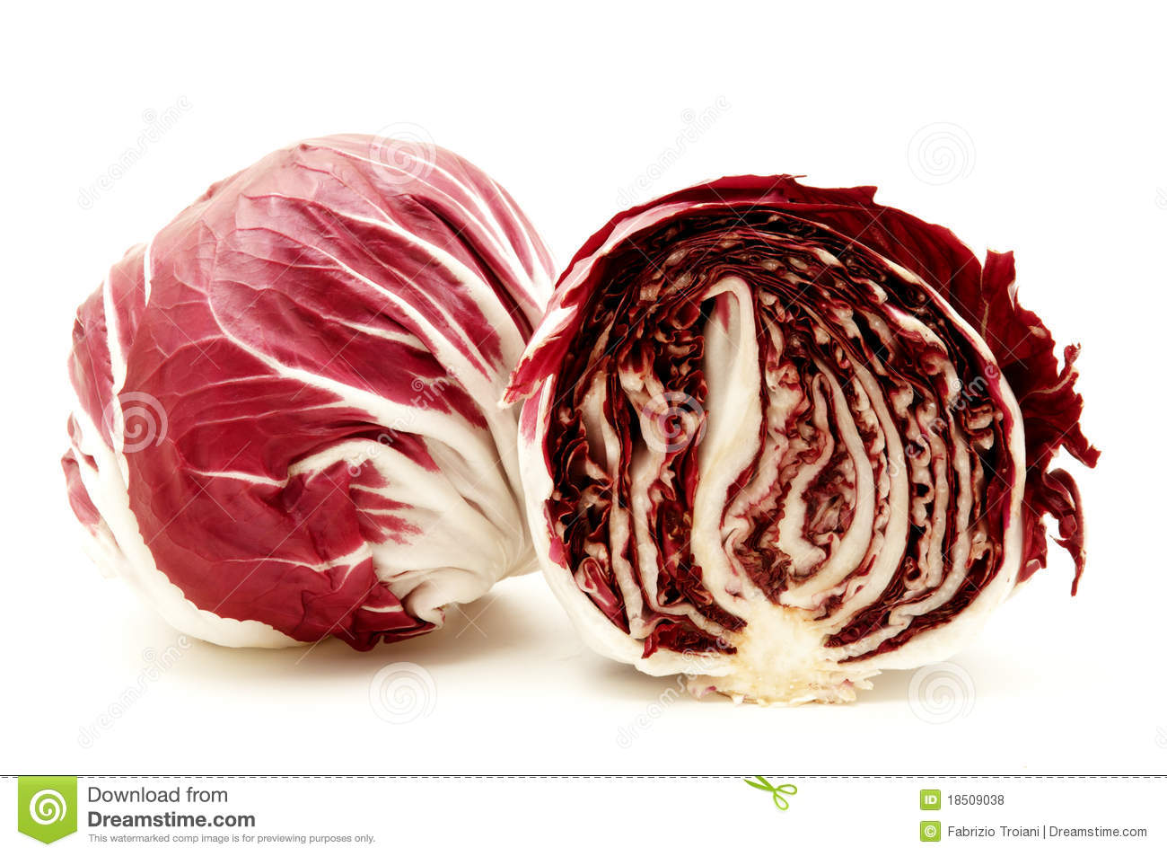 Radicchio Royalty Free Stock Photos.