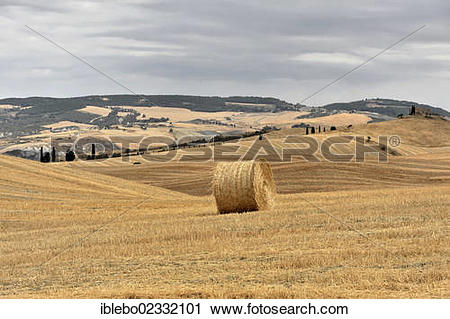 """Stock Photography of """"A bale of straw, harvested wheat fields."""