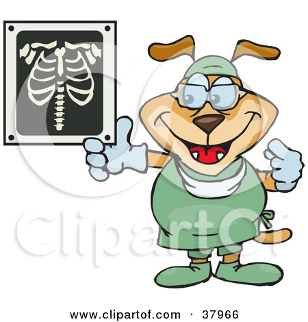 Clipart Illustration of a Dog Radiologist In Scrubs, Holding Up An.