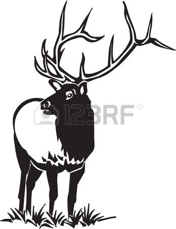 5,826 Elk Stock Vector Illustration And Royalty Free Elk Clipart.
