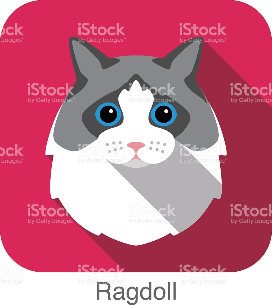 Ragdoll Cat Breed Face Cartoon Flat Icon Design stock vector art.