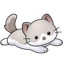 ragdoll kittee.
