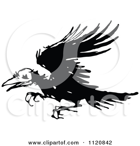 Clipart Of A Retro Vintage Black And White Ragged Raven.