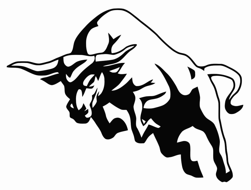How do You Stop a Raging Bull?.