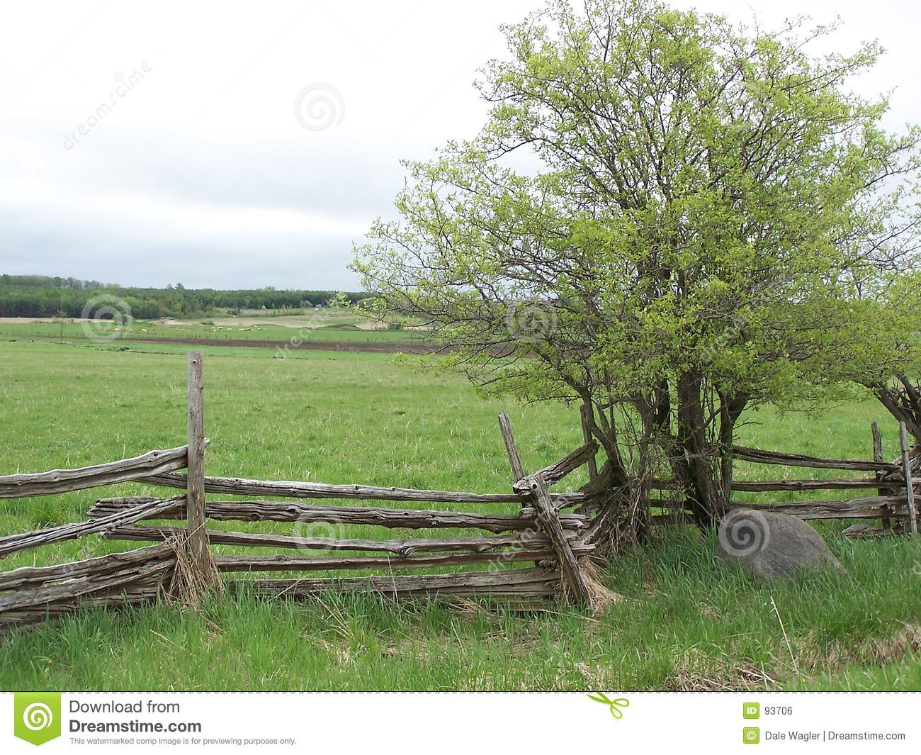 Cedar Rail Fence Royalty Free Stock Image.