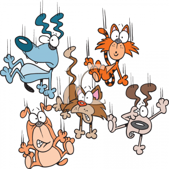 Raining Cats And Dogs Animated Clipart.