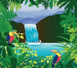 Free Rainforest Clipart.
