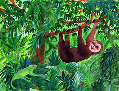 Clipart rainforest.
