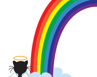 Rainbow bridge card.