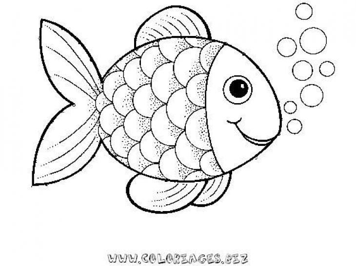 rainbow fish clipart black and