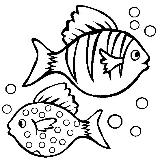 25+ best ideas about Rainbow Fish Template on Pinterest.