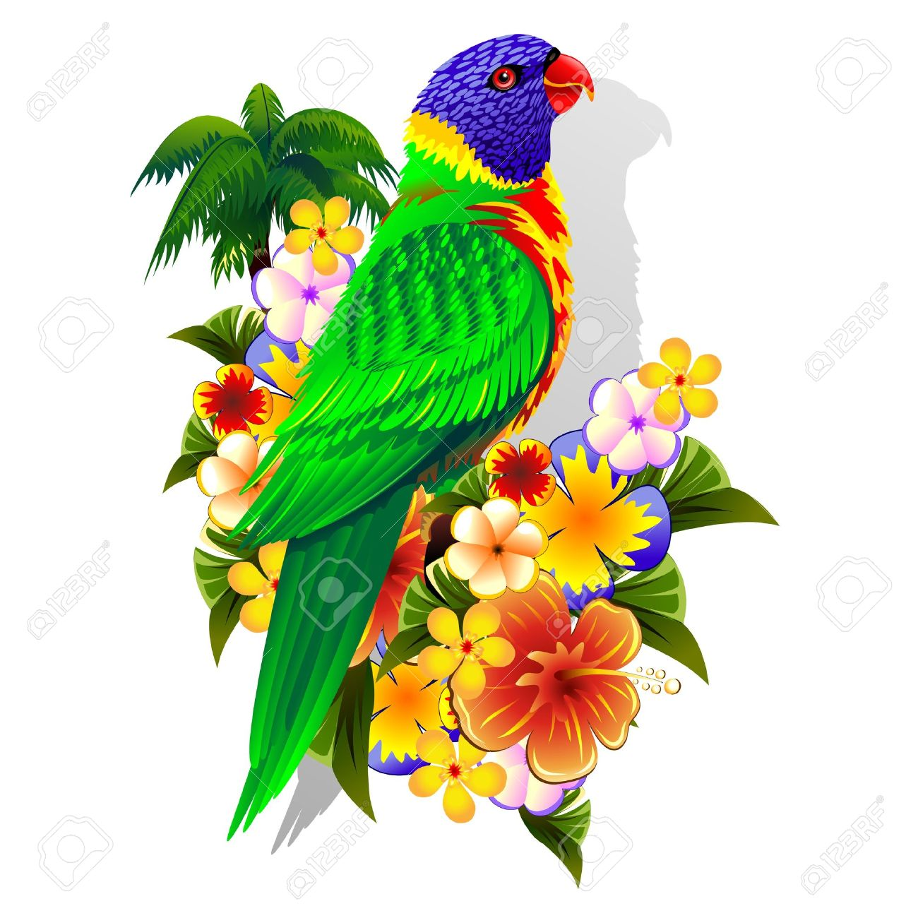 Rainbow Lorikeet On Tropical Flowers Royalty Free Cliparts.