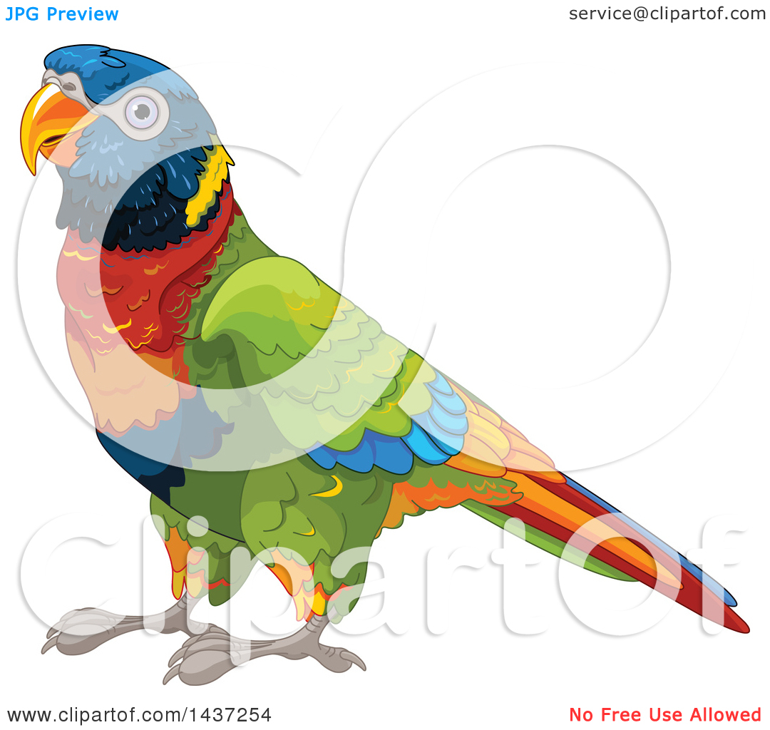 Clipart of a Cute Rainbow Lorikeet Bird.