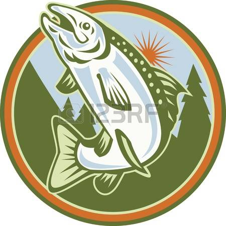 234 Rainbow Trout Stock Vector Illustration And Royalty Free.