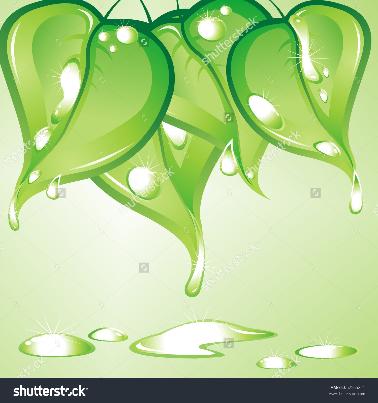 Raindrops On Leaves After Rain Stock Vector 52565251.