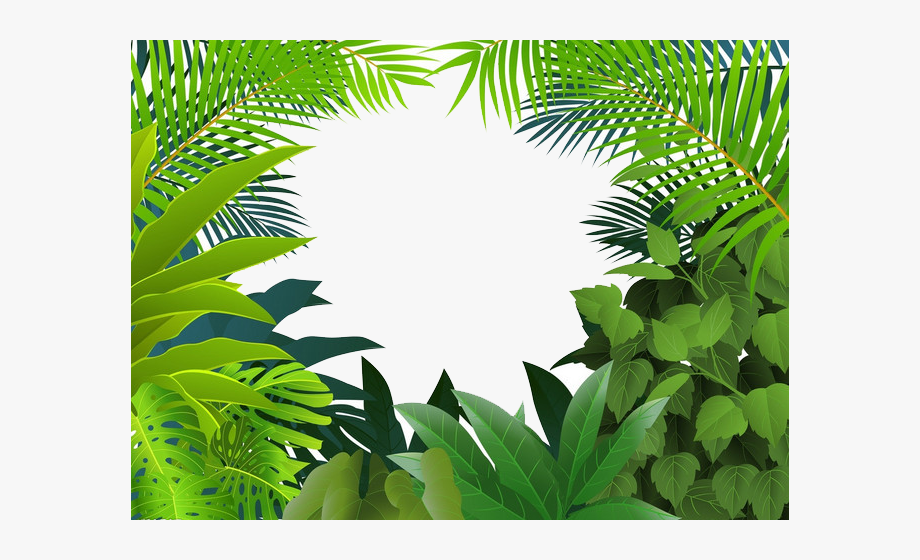 Rainforest Jungle Tropics Clip Art Yin Green.