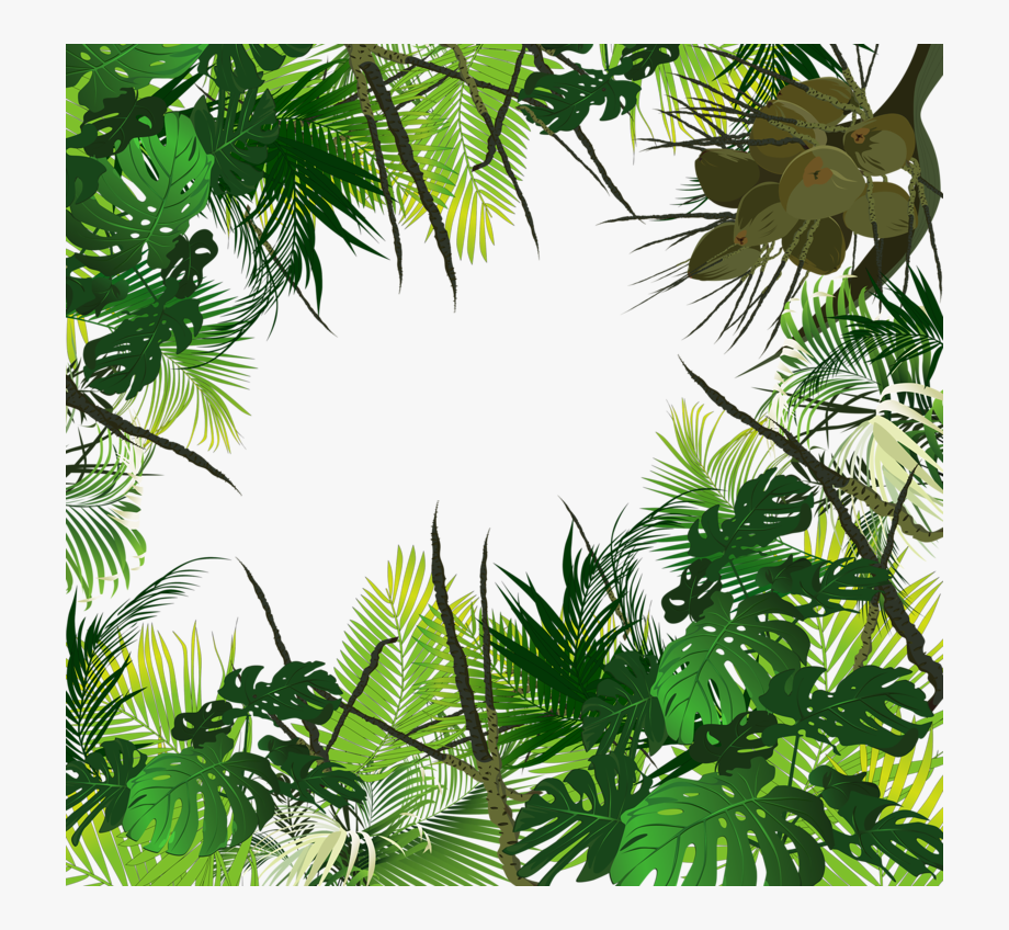 Waterfall Clipart Tropical Evergreen Forest.