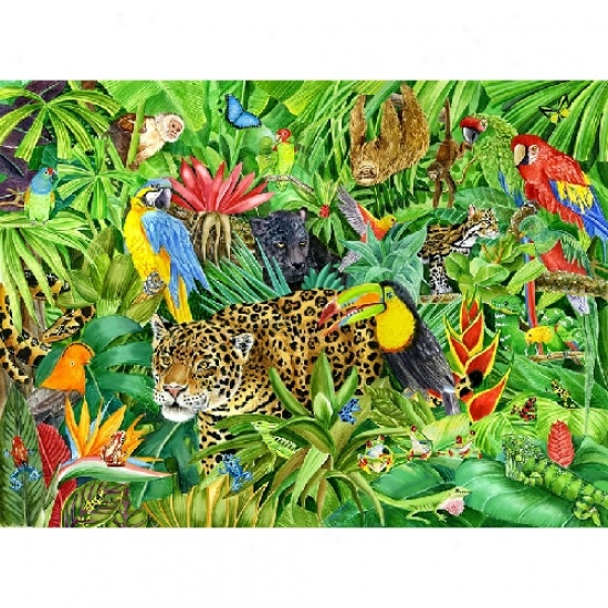 Free Rainforest Cliparts, Download Free Clip Art, Free Clip.