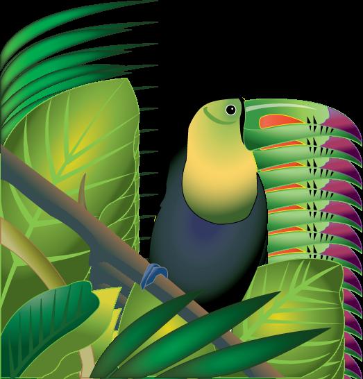Free Rainforest Cliparts, Download Free Clip Art, Free Clip.