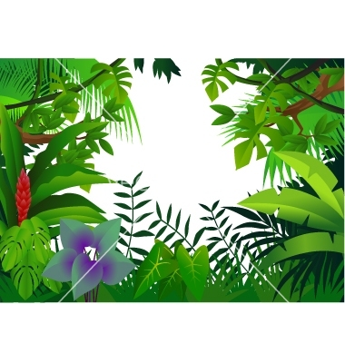 Rainforest Clipart, Download Free Clip Art on Clipart Bay.