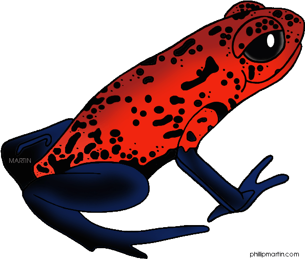 Rainforest Frogs Clipart.