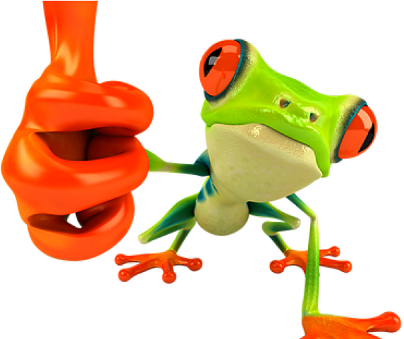 Red Eyed Tree Frog Clipart Rainforest Animal.