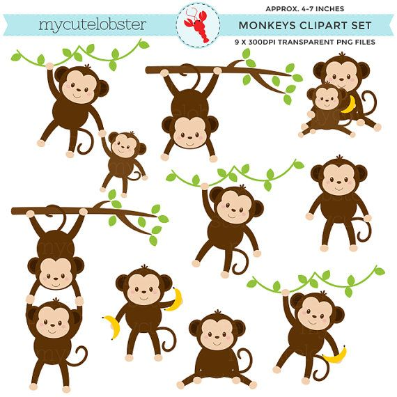 Monkeys Clipart Set.