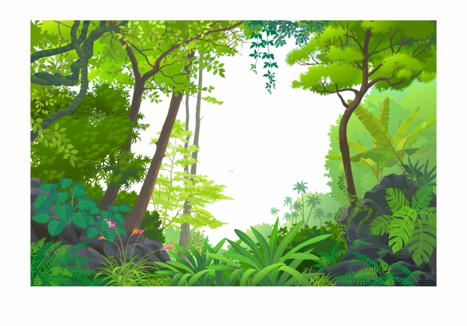 Tropical Euclidean Vector Jungle Rainforest Cartoon.
