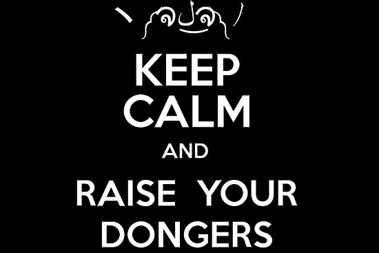 Raise Your Dongers!.