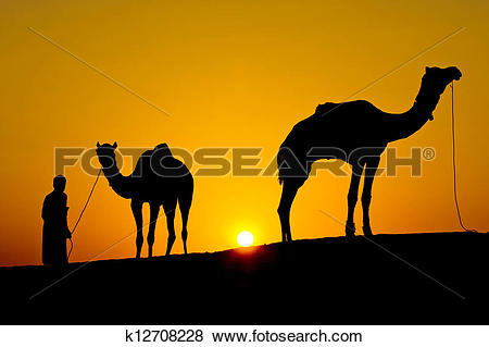 Pictures of Rajasthan village. Silhouette of a man and two camels.