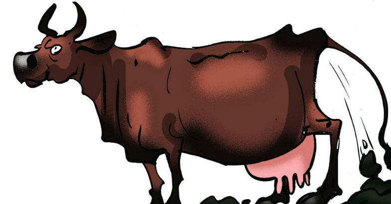 Cow only animal to inhale, exhale oxygen: Rajasthan edu minister.