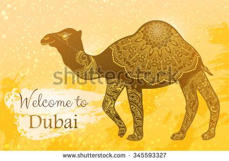 Rajasthan Camel Stock Photos, Royalty.