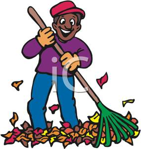 Smiling African American Man with a Rake and Leaves.