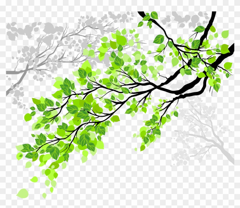 tree #trees #nature #leaves #branches #branch.